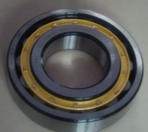 N318 Bearing or N328 N320 Spindle Bearing for Rolling Machine pictures & photos