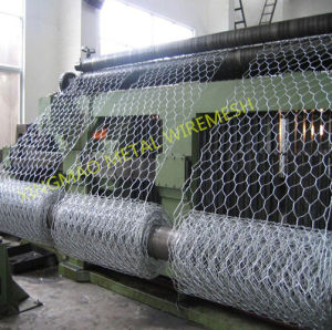 80X100mm Galvanized Reno Mattress/Gabion Mattress (XM23) pictures & photos