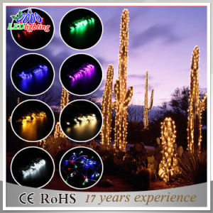 Outdoor & Indoor Controller Connectable RGB LED Christmas String Light pictures & photos