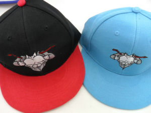 Top Quality Custom Fashionl Embroidery Cap Manufacturers pictures & photos