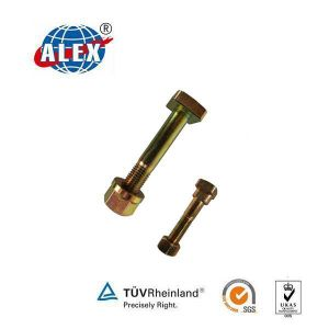 Track Bolt with Nut Plain Oiled pictures & photos
