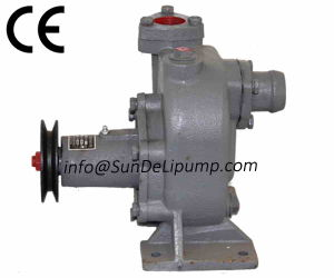 (762D-21c-000) Weichai Marine Diesel Engine Cooling Raw Sea Water Pump