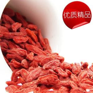 Organic Goji Berry, Super Goji Berry, Dried Goji Berries pictures & photos