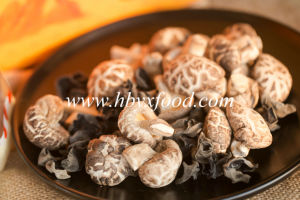 Dehydrated Vegetable Dried Tea Flower Mushroom pictures & photos