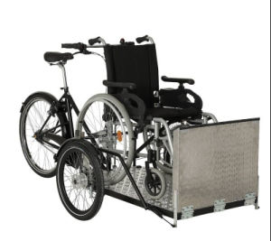 a Cargo Bikes with Top and Seatbelts 2015 New Madel (DT-039 pictures & photos