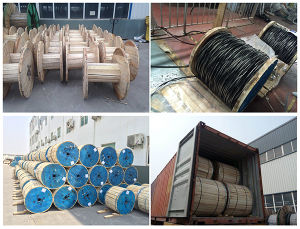 Overhead Insulated Cable / Service Drop Cable / ABC Cable pictures & photos