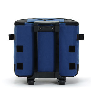 Cooler Bag with Pull Roller pictures & photos
