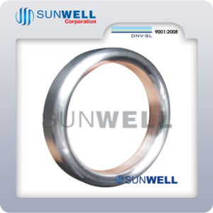 Oval Ring Joint Gasket Rtj Ss304 316L 31803 pictures & photos