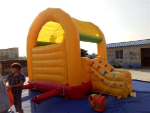 Inflatable Bouncer /Inflatable Jumper with Small Slide, pictures & photos