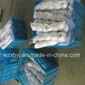 0.18mmx70mmsqx75mdx200m Nylon Monofilament Fishing Net for Kazakhstan pictures & photos