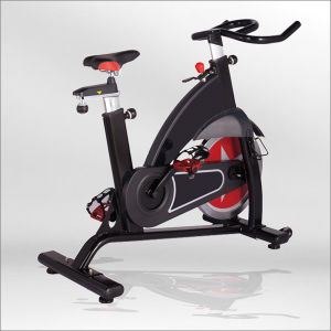 china luxurious spinning bike indoor spin bike gym spinning bike for sale bse01 china. Black Bedroom Furniture Sets. Home Design Ideas