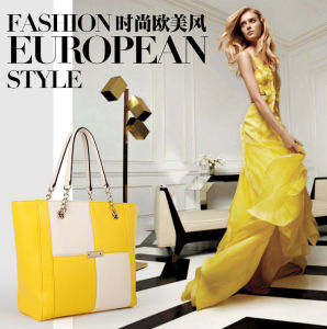 Starriness Handbag Own Factories+ISO9001 Quality Control+Designer Team (CG9902) pictures & photos