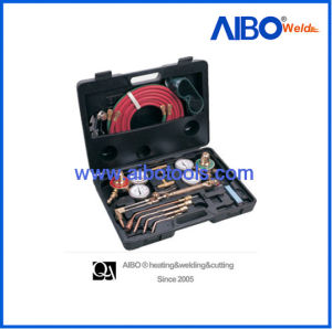 Plastic Box Package Welding and Cutting Outfit (2W1825) pictures & photos