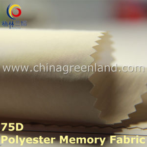 70d 55%Polyester 45%Nylon Memory Fabric for Dust Coat (GLLML206) pictures & photos