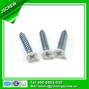 M3.5 White Painted Steel Screw Flat Head Self Tapping Wood Screw pictures & photos