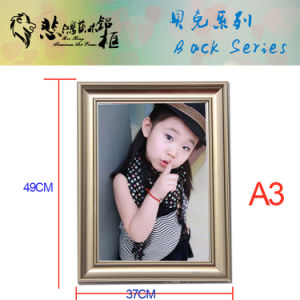 H14 A3 Snap Aluminum Photo Frame Picture Frame pictures & photos