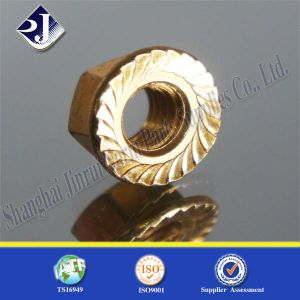 DIN6923 for Auto Hex Flange Nut pictures & photos