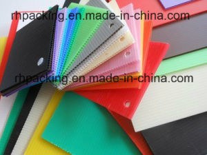 3mm Polypropylene PP Twin Wall Corrugated Plastic Sheet/ Board pictures & photos