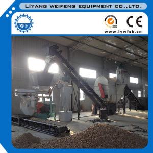 Biomass Pellet Production Line/Wood Pellet Plant Supplier pictures & photos