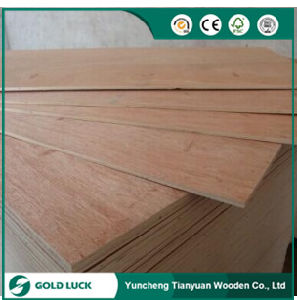 Best Price Beautiful Bintangor Indoors Commercial Plywood 1220X2440mm pictures & photos