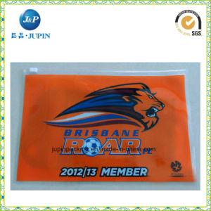 Eco PVC EVA Clear Bag pictures & photos
