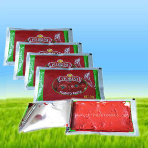 Sachet Package Gino Tomato Paste From Chinese Tomato Paste Factory pictures & photos