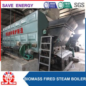 Industrial Palm Shell, Rice Husk Boiler for Food Industry pictures & photos