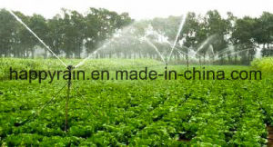 Drip Irrigation for Agricultural Irrigation System pictures & photos