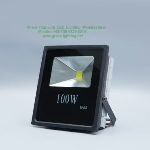 Professional Manufacturer 100W LED Flood Light pictures & photos