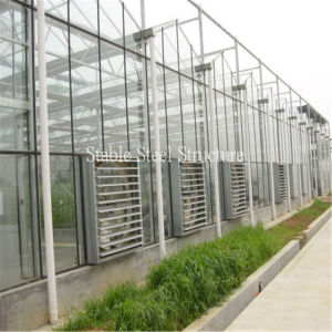 Beautiful and Practical Venlo Glass Greenhouse pictures & photos