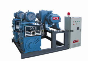 Two-Stages Rotary Piston Vacuum Pump for Oil Recycling and Testing pictures & photos