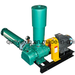 Low Noise Positive Displacement Roots Blower for Sewage Treatment