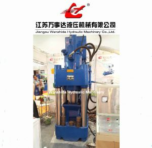 Sponge Iron Fines Briquetting Press (Y83-2500)