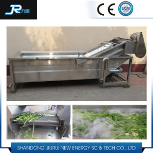 Herbs Bubble and High Pressure Washing Machine with Sterilization pictures & photos