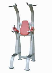 Commercial Fitness Chinning Dipping/Gym Equipment with SGS/CE (UM406) pictures & photos