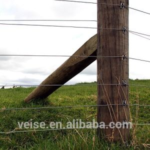 electric Fence System/ Farm Electric Fence / Electric Fence Energizer pictures & photos
