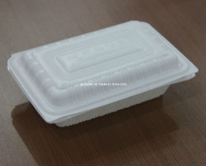 Recyclable Take Away Dinner Box pictures & photos
