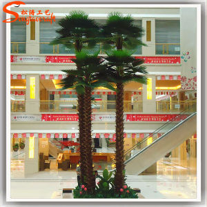 New Style Cheap Artificial Washington Palm Tree pictures & photos