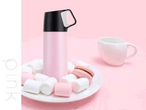 Water Bottle, Vacuum Insulated Tumbler, Coffee Travel Mug. 17 Oz, Stainless Steel pictures & photos