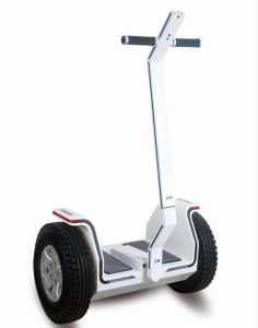 Electric Chariot, Electric Scooter