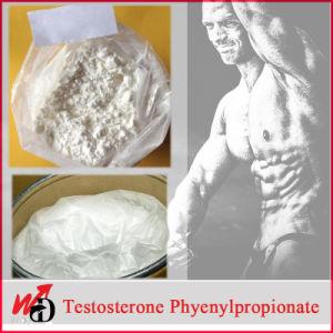 Raw Hormone Powders Cutting Cycle Steroids Testosterone Phenylpropionate pictures & photos