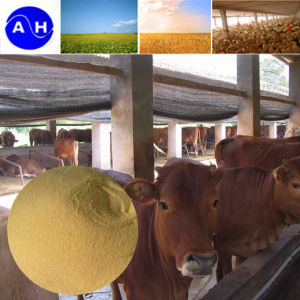 Amino Acid Powder 40% 60% 80% Feed Grade pictures & photos