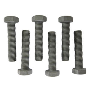 Fastener pictures & photos