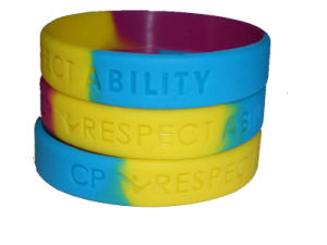 Promotional Color Segmented Debossed Logo Silicone Rubber Wristbands pictures & photos