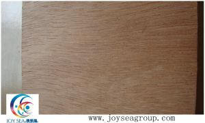 Cheap Plywood Commercial Plywood 12mm Plywood Price pictures & photos