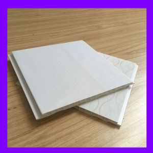 China Manufacturer for PVC Plastic Decorative Panel (RN-116) pictures & photos