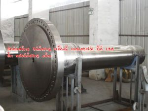 Turbine or Motor Shaft for Fan pictures & photos