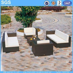 Outdoor Garden Furniture Dark Brown Rattan Sofa pictures & photos