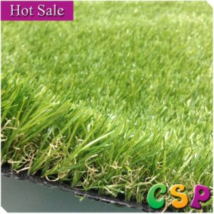 Csp004-1 4 Tons Green Color Garden Grass with High Quality pictures & photos