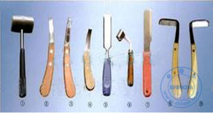 Animal Hoof Knife (VSR-80) pictures & photos